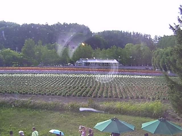 現在のファーム富田の映像
